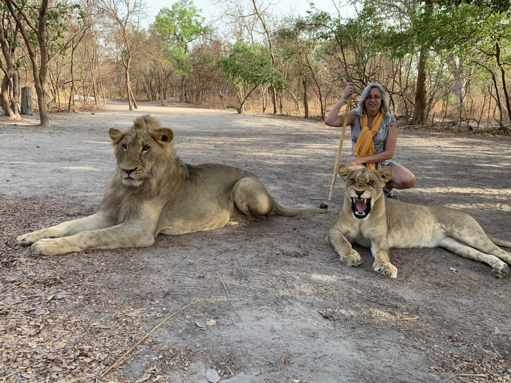 Lions Fathala
